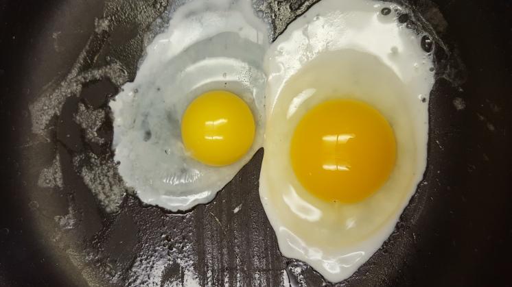 Holy yolks!
